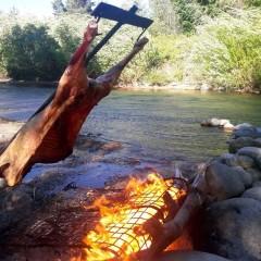 El mejor cordero patagónico, con mil lugares para prepararlo
