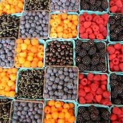Fruta Fina